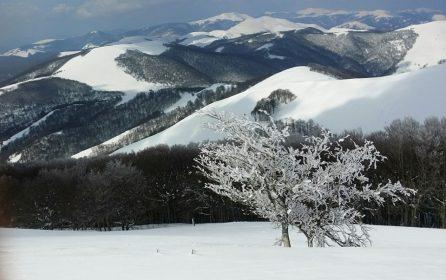 Les Pyrénées sous la neige à Roncesvaux.